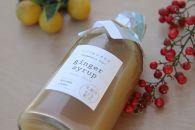 「ジンジャーシロップ」たっぷり300g(3本セット)!南島原市で栽培される生姜で作りました!