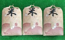 【2019年度先行受付】話題のお米 つや姫(玄米)30Kg
