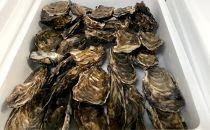 生牡蠣中サイズ約2.8kg(30個入)