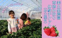 新品種も登場!美土里農園「苺摘み取り体験チケット(4名まで使える)」(お土産付)