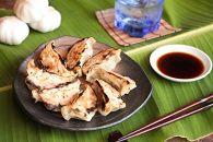 【年末年始キャンペーン中!♪】雑誌に紹介された奄美島豚スタミナ餃子