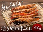 【年末年始キャンペーン中!♪】冷凍車エビ800g