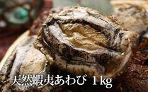 利尻島産天然蝦夷あわび1kg(冷凍)<利尻漁業協同組合>
