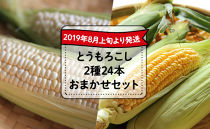 【2019年8月上旬より発送】とうもろこし2種24本おまかせセット
