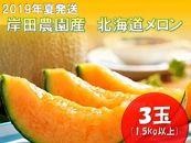 ★2019年夏発送★岸田農園産北海道メロン3玉入り(サイズ:1.5kg以上)【130セット限定】