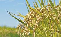 特別栽培米コシヒカリ「吾妻の輝き」精米10kg