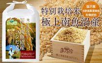 【頒布会】特別栽培米「極上南魚沼産コシヒカリ」(有機肥料、8割減農薬栽培)玄米10kg×全3回