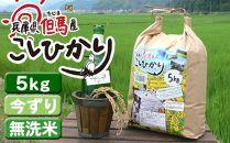 【今ずり・無洗米】兵庫県但馬産コシヒカリ(白米)5kg