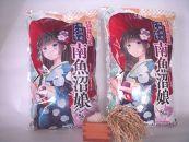 特別栽培米南魚沼娘10kg(5kg×2袋)