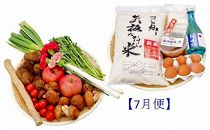 【数量限定】2019年発送 野菜便(L)7月便