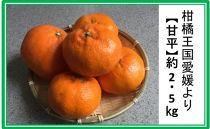 ★受付終了★柑橘王国愛媛産柑橘【甘平】約2.5kg~まごころ手選り手詰め