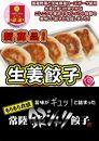 ニンニク不使用!「常陸銀シャリ生姜餃子」