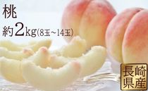 [5/31受付終了]長崎県産 桃 約2kg(8玉~14玉)【2019年6月より発送開始】