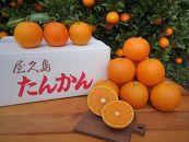 屋久島産たんかん(5キロ・サイズ混合)