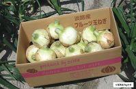 【新玉予約!】淡路島フルーツ玉ねぎ3kg・テレビや雑誌で多数紹介