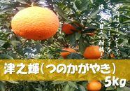 オレンジの風味、津之輝(つのかがやき)の登場です!