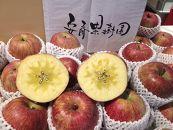 こだわりの美味しいりんご(サンフジ)5kg