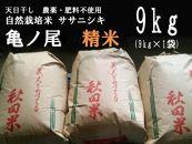 天日干し 農薬・肥料不使用 自然栽培米「ササニシキ」または「亀ノ尾」精米 9kg