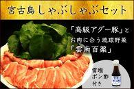 ★受付停止★高級アグー豚しゃぶしゃぶ用800g&お肉に合う琉球野菜雲南百薬のセット