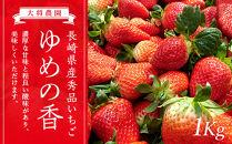 【長崎県産】秀品いちご 1kg