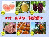 【定期便 全6回】オールスター贅沢便 (お肉からフルーツまで)