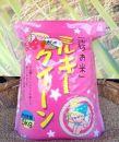 【令和元年産】美浦村産厳選良質米「ミルキークイーン」5kg
