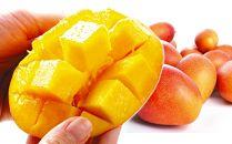 宮崎産アップルマンゴー1kg1箱