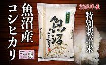 【2018年度米】特別栽培米コシヒカリ 5kg