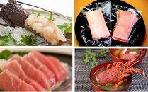 【佐伯 海の贅沢】佐伯産本マグロ&伊勢海老セット 急速冷凍して水揚げ直後の新鮮なままお届けします