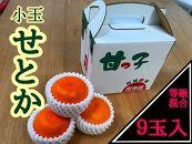 【甘っ子】小玉せとか9玉入/手さげ箱