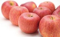 【数量・期間・ネット限定】【平成31年度リンゴの頒布会】リンゴ5kg×3回