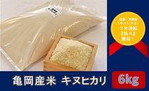 亀岡産米 キヌヒカリ 6kg