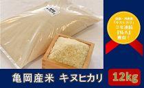 亀岡産米 キヌヒカリ 12kg