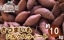 さつま芋「シルクスウィート」約10kg/S~Lサイズ/森田農園/日曜市農家8代目