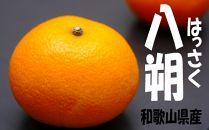 はっさく5kg箱(4.5kg入り) 和歌山県から農園直送!