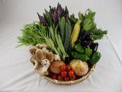 【数量限定】季節の加賀野菜・金沢地物野菜セット
