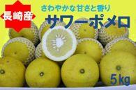 「長崎産」さわやかな甘さと香り サワーポメロ5kg