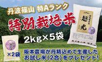 丹波篠山産 特Aランク 特別栽培米 越光(2kg×5袋)