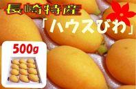 長崎特産「ハウスびわ」500g(箱入り)
