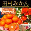 ■高級ブランド田村みかん 5kg
