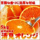 ■とにかくジューシー清見オレンジ 5kg[2021年4月~発送]