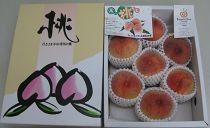 【ポイント交換】「三豊の桃」約1.8kg化粧箱入り
