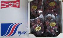 【5月1日受付開始】三豊市産ロゼピオーネ約1.8kg