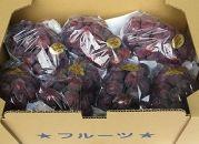 【5月1日受付開始】三豊市産ロゼピオーネどっさり約5kg