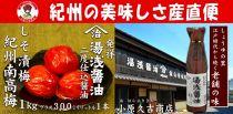 ■南高梅しそ漬梅干1kgと湯浅醤油1本[M1031-C]