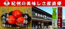 ■南高梅しそ漬梅干1kgとぽん酢1本M1033-C]