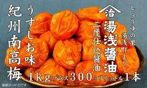 ■南高梅うすしお味1kgと湯浅醤油1本[M1034-C]