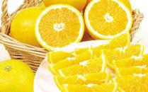 バレンシアオレンジ 5kg