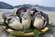 ★期間限定★岩かき 5kg【漁師直送!】