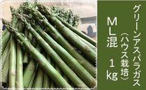 グリーンアスパラガス(ハウス栽培)ML混1Kg